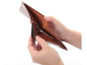 ナチュラルグレージングコードバン  二つ折り財布(小銭入れなし)  「プレリーギンザ」 NP53227 特徴2